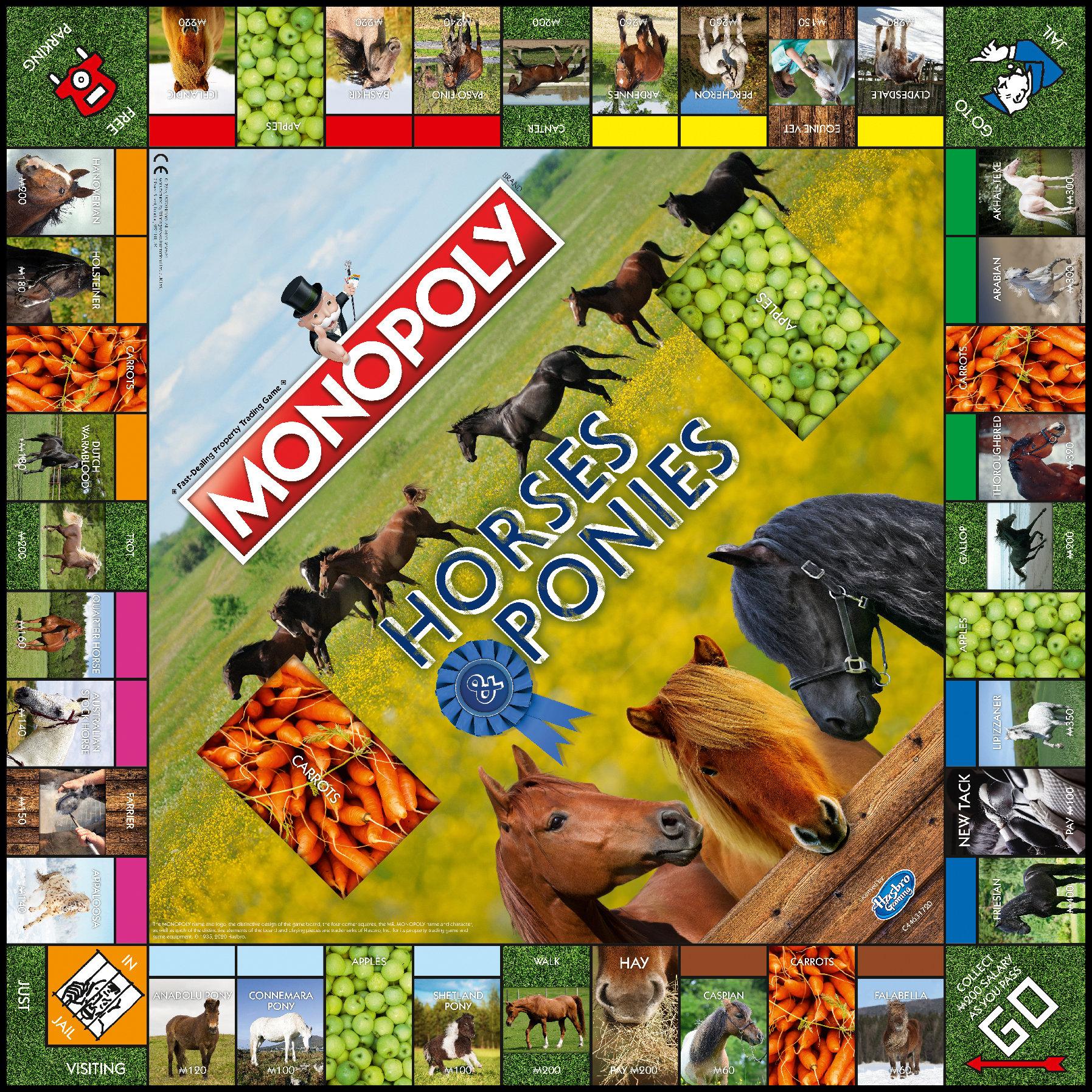 Monopoly Pferde und Ponys
