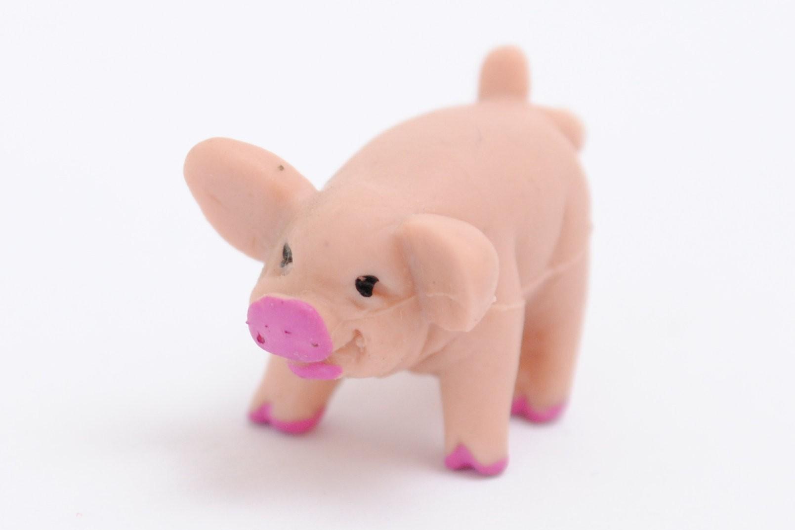 Schweinerei Schweinchen